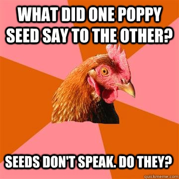 What did one poppy seed say to the other? Seeds don't speak. Do they? - What did one poppy seed say to the other? Seeds don't speak. Do they?  Anti-Joke Chicken