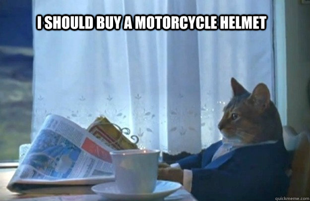 I should buy a motorcycle helmet - I should buy a motorcycle helmet  Sophisticated Cat