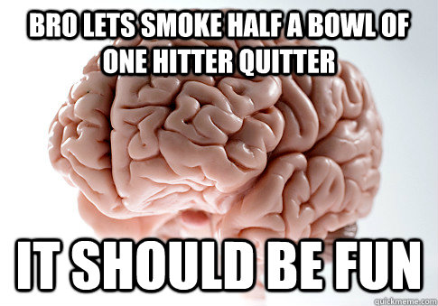 bro lets smoke half a bowl of one hitter quitter it should be fun - bro lets smoke half a bowl of one hitter quitter it should be fun  Scumbag Brain