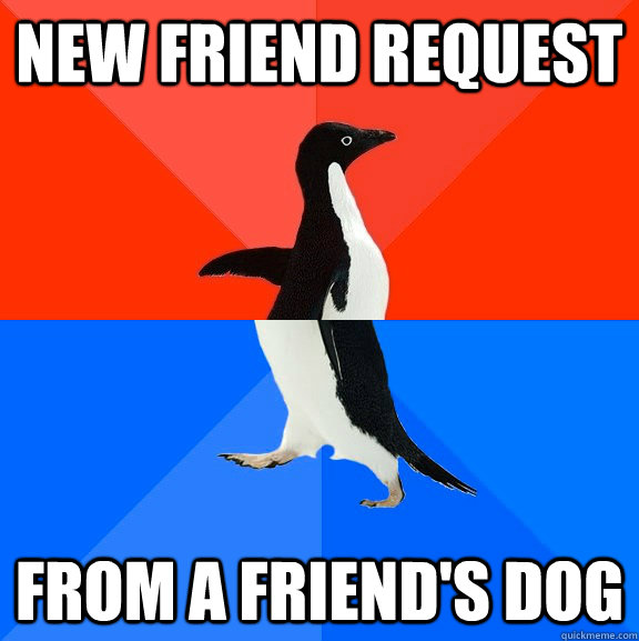 New friend request from a friend's dog - New friend request from a friend's dog  Socially Awesome Awkward Penguin