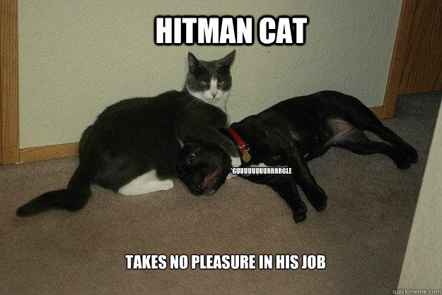 takes no pleasure in his job hitman cat *guuuuuuuurrrrgle