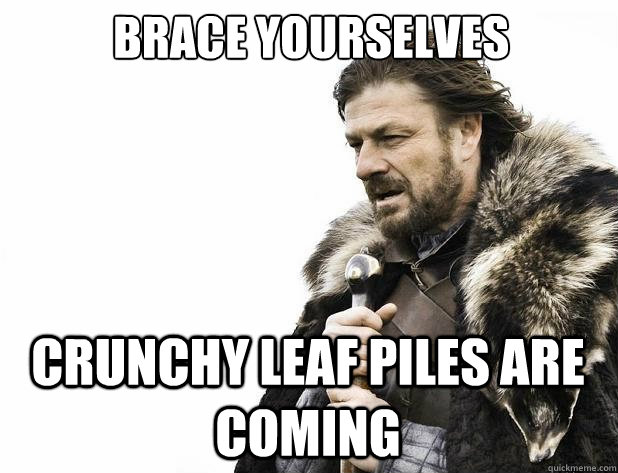 brace yourselves Crunchy Leaf Piles Are Coming - brace yourselves Crunchy Leaf Piles Are Coming  Misc
