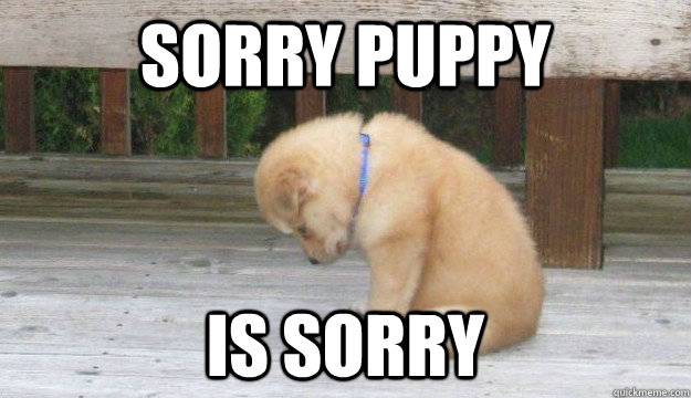 SORRY PUPPY IS SORRY
