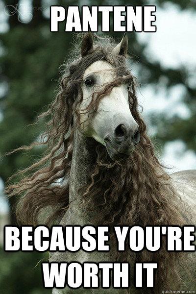 Pantene Because you're worth it - Pantene Horse - quickmeme