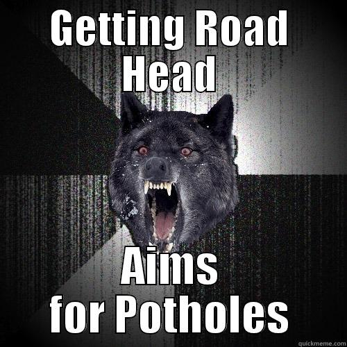 GETTING ROAD HEAD AIMS FOR POTHOLES Insanity Wolf