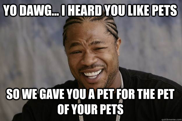 Yo dawg... I heard you like pets so we gave you a pet for the pet of your pets - Yo dawg... I heard you like pets so we gave you a pet for the pet of your pets  Xzibit meme