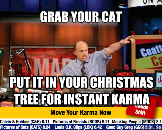 grab your cat put it in your christmas tree for instant karma - grab your cat put it in your christmas tree for instant karma  Mad Karma with Jim Cramer
