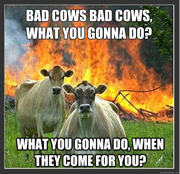 Bad Cows Bad cows, what you gonna do? what you gonna do, when they come for you? - Bad Cows Bad cows, what you gonna do? what you gonna do, when they come for you?  Evil cows