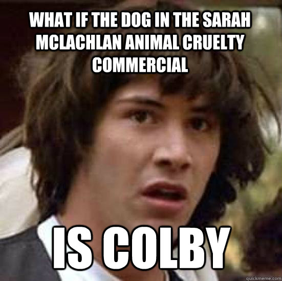 ce9cd8660987a3bfeb6082ecae02ae2483f97cf9828bfa3f5e2492ce1125a2a5 what if the dog in the sarah mclachlan animal cruelty commercial