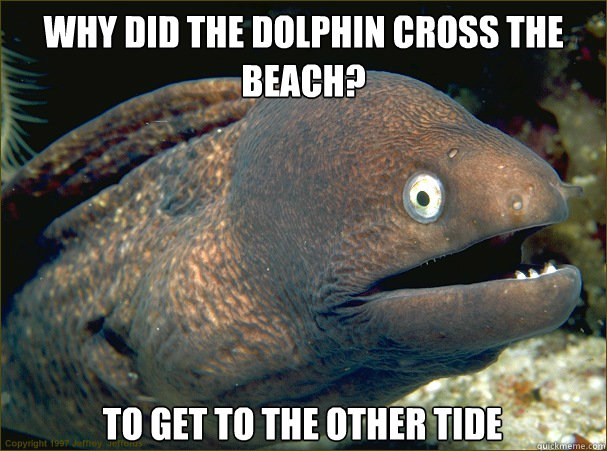 Why did the dolphin cross the beach? To get to the other tide - Why did the dolphin cross the beach? To get to the other tide  Bad Joke Eel