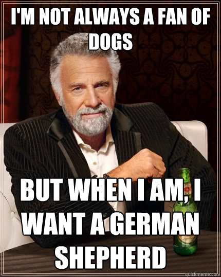 I'm not always a fan of dogs But when I am, I want a german shepherd - I'm not always a fan of dogs But when I am, I want a german shepherd  The Most Interesting Man In The World