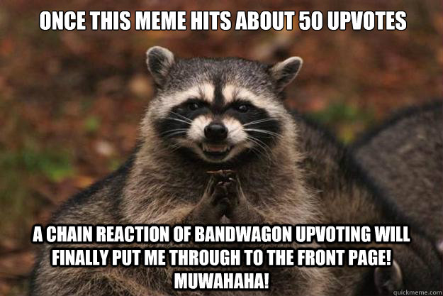 Once this meme hits about 50 upvotes a chain reaction of bandwagon upvoting will finally put me through to the front page! Muwahaha!  Evil Plotting Raccoon