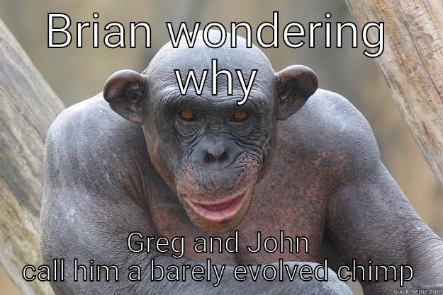 BRIAN WONDERING WHY GREG AND JOHN CALL HIM A BARELY EVOLVED CHIMP The Most Interesting Chimp In The World