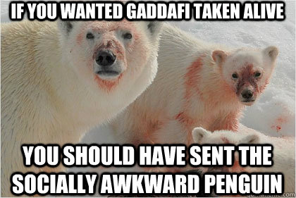 If you wanted gaddafi taken alive You should have sent the Socially Awkward Penguin