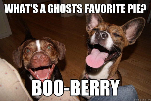 What's a ghosts favorite pie? Boo-berry  Clean Joke Puppies