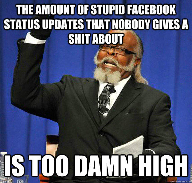 The amount of stupid facebook status updates that nobody gives a shit about Is too damn high  Jimmy McMillan