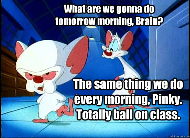 What are we gonna do tomorrow morning, Brain? The same thing we do every morning, Pinky. Totally bail on class. - What are we gonna do tomorrow morning, Brain? The same thing we do every morning, Pinky. Totally bail on class.  Pinky and the Brain