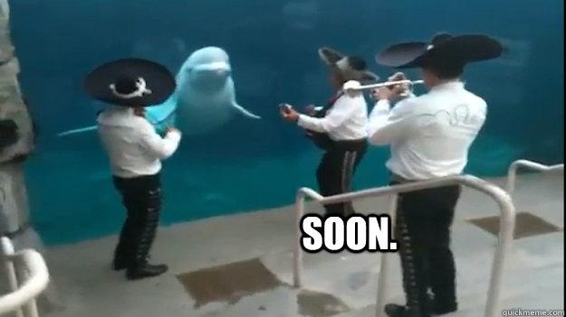SOON. - SOON.  Soon mariachi.