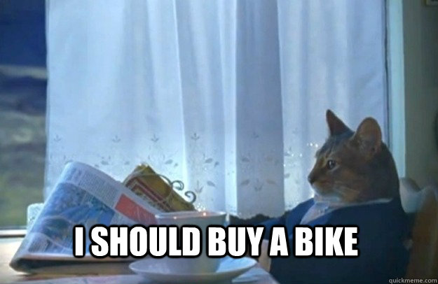 I should buy a bike - I should buy a bike  Sophisticated Cat