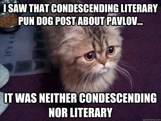 I saw that condescending literary pun dog post about pavlov... It was neither condescending nor literary  - I saw that condescending literary pun dog post about pavlov... It was neither condescending nor literary   Disconcerted Kitty