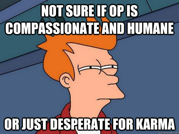 Not sure if OP is compassionate and humane Or just desperate for karma - Not sure if OP is compassionate and humane Or just desperate for karma  Futurama Fry