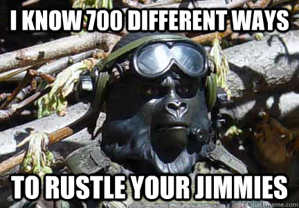 I KNOW 700 DIFFERENT WAYS TO RUSTLE YOUR JIMMIES  Gorilla Warfare
