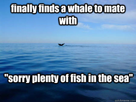 All the fish in the sea dating site