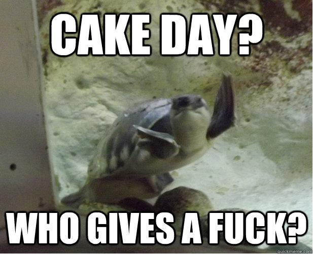 Cake Day? Who gives a fuck? - Cake Day? Who gives a fuck?  Give up Turtle