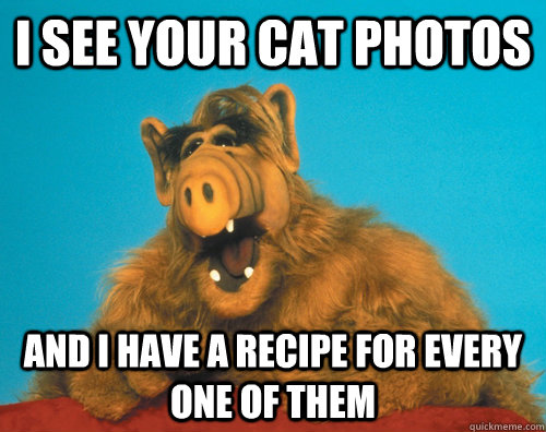 I see your cat photos and I have a recipe for every one of them - I see your cat photos and I have a recipe for every one of them  Misc