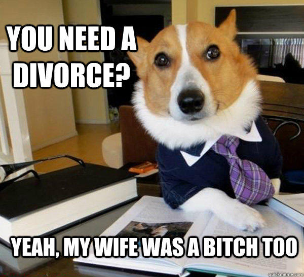 you need a Divorce? yeah, my wife was a bitch too  - you need a Divorce? yeah, my wife was a bitch too   Lawyer Dog
