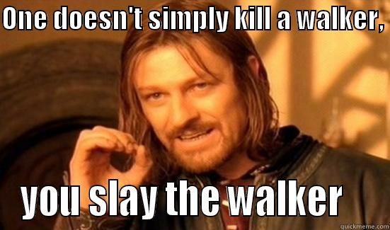ONE DOESN'T SIMPLY KILL A WALKER,  YOU SLAY THE WALKER    Boromir