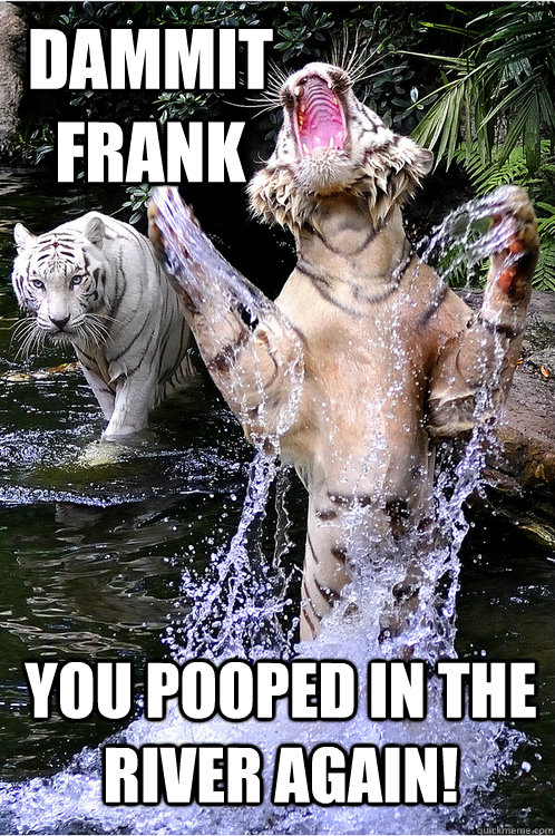 Dammit frank you pooped in the river again! - Dammit frank you pooped in the river again!  UPSET TIGER