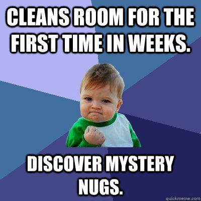 Cleans room for the first time in weeks. Discover mystery nugs. - Cleans room for the first time in weeks. Discover mystery nugs.  Success Kid