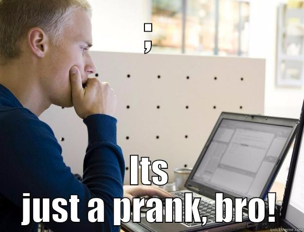 ; ITS JUST A PRANK, BRO! Programmer