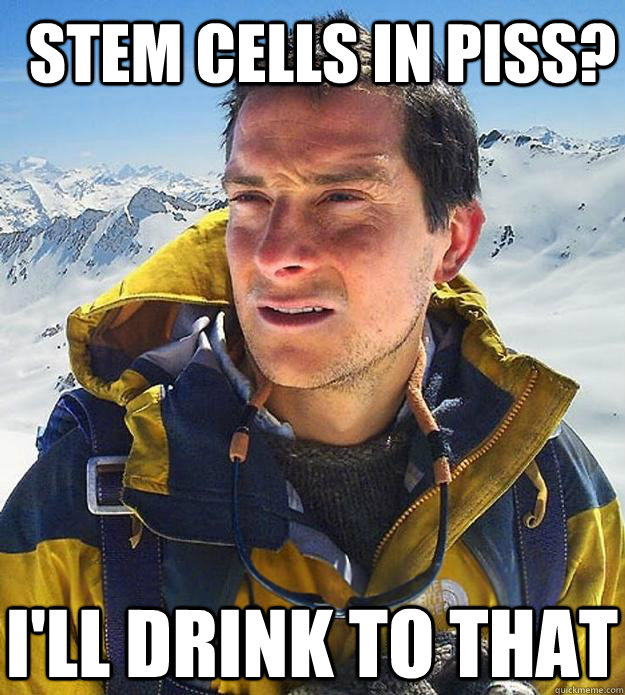 Stem cells in piss? I'll drink to that