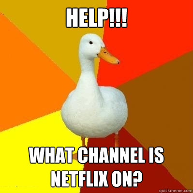 how to add netflix to wii channel