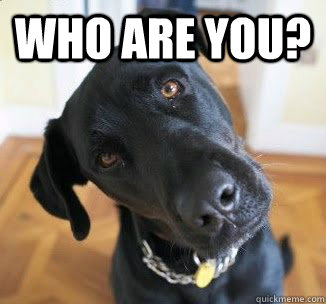 Who Are You?  - Who Are You?   Confused Dog