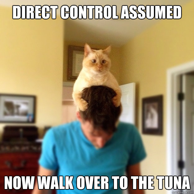 Direct control assumed Now walk over to the tuna - Direct control assumed Now walk over to the tuna  Misc