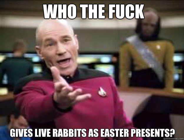 WHO THE FUCK GIVES LIVE RABBITS AS EASTER PRESENTS?