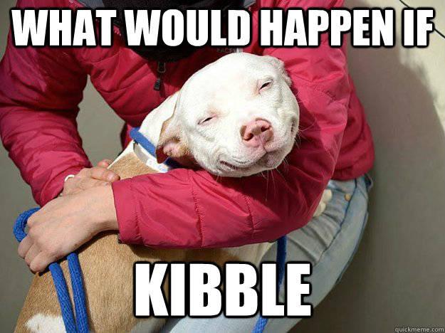 what would happen if kibble  10 Dog