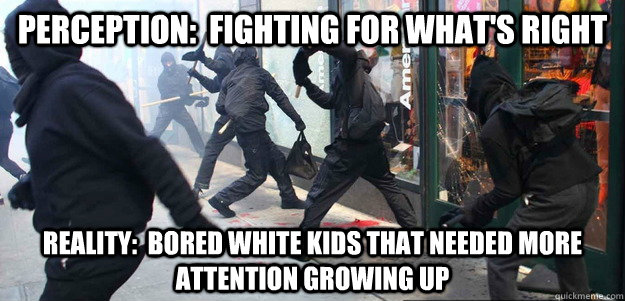 Perception:  Fighting for what's right Reality:  Bored white kids that Needed more attention growing up