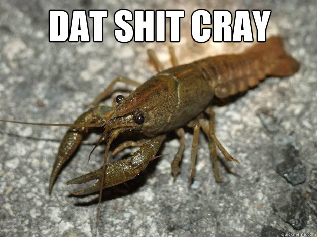 dat shit cray  - dat shit cray   Misc
