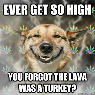 ever get so high you forgot the lava was a turkey? - ever get so high you forgot the lava was a turkey?  Stoner Dog