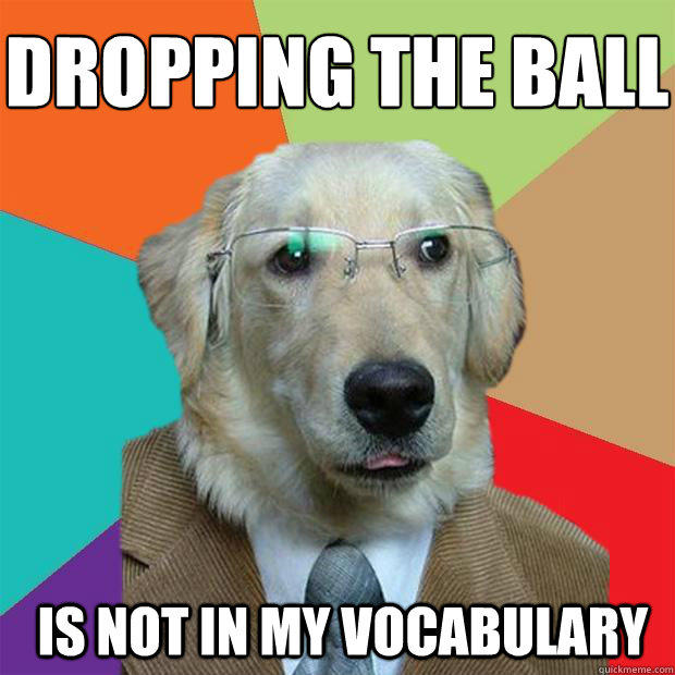 Dropping the ball  Is not in my vocabulary  - Dropping the ball  Is not in my vocabulary   Business Dog