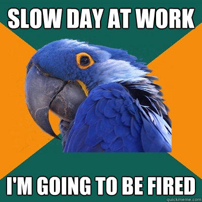 Slow day at work i'm going to be fired - Slow day at work i'm going to be fired  Paranoid Parrot
