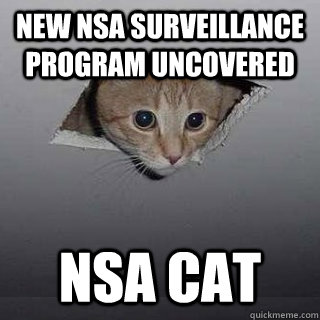 New NSA surveillance program uncovered NSA Cat - New NSA surveillance program uncovered NSA Cat  Ceiling Cat
