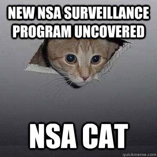 New NSA surveillance program uncovered NSA Cat - New NSA surveillance program uncovered NSA Cat  Ceiling Cat