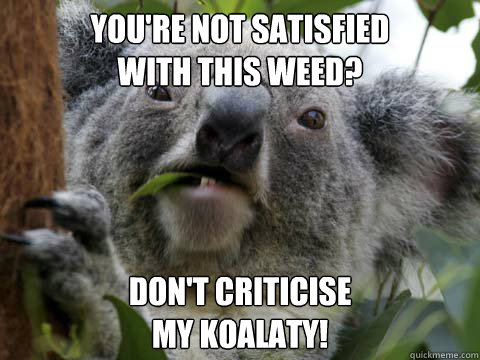 You're not satisfied with this weed? don't criticise my koalaty!