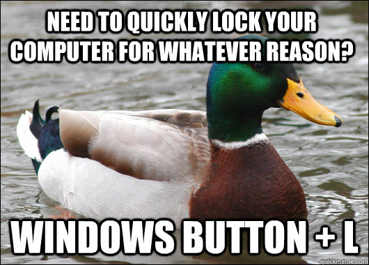 Need to quickly lock your computer for whatever reason? Windows Button + L - Need to quickly lock your computer for whatever reason? Windows Button + L  Actual Advice Mallard