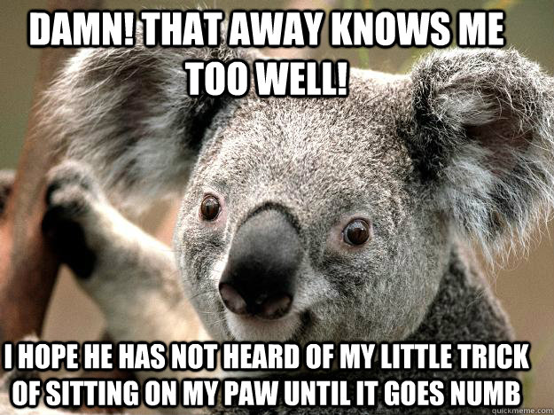 damn! that away knows me too well! i hope he has not heard of my little trick of sitting on my paw until it goes numb